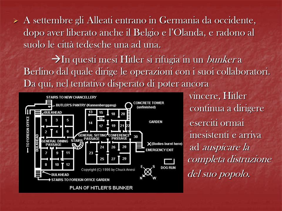 A settembre gli Alleati entrano in Germania da occidente, dopo aver liberato anche il Belgio e lOlanda, e radono al suolo le città tedesche una ad una