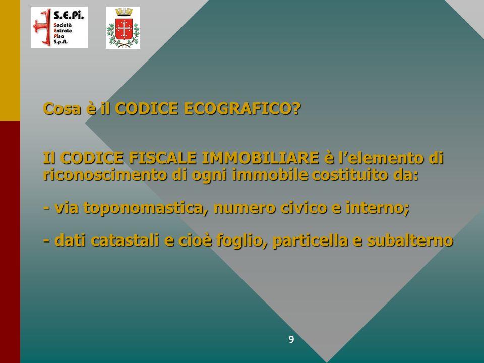 9 Cosa è il CODICE ECOGRAFICO.