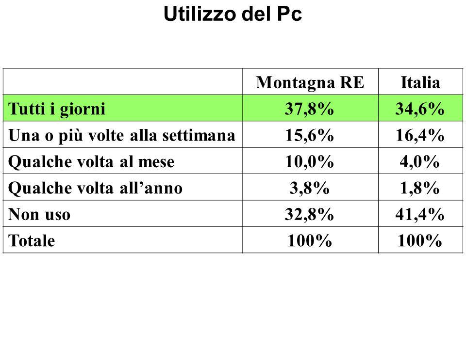 Utilizzo del Pc Montagna REItalia Tutti i giorni37,8%34,6% Una o più volte alla settimana15,6%16,4% Qualche volta al mese10,0%4,0% Qualche volta allanno3,8%1,8% Non uso32,8%41,4% Totale100%