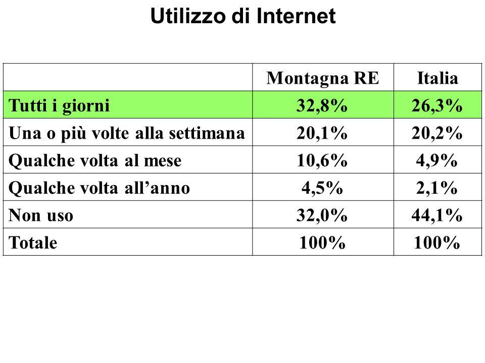 Utilizzo di Internet Montagna REItalia Tutti i giorni32,8%26,3% Una o più volte alla settimana20,1%20,2% Qualche volta al mese10,6%4,9% Qualche volta