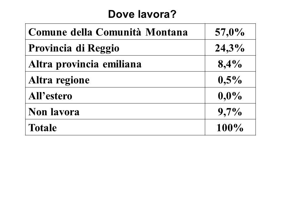 Dove lavora? Comune della Comunità Montana57,0% Provincia di Reggio24,3% Altra provincia emiliana8,4% Altra regione0,5% Allestero0,0% Non lavora9,7% T