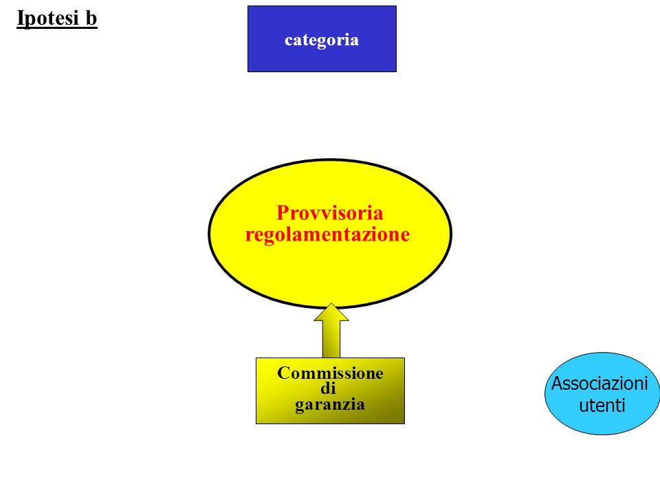 proposta Provvisoria regolamentazione Ipotesi b Associazioni utenti Commissione di garanzia categoria