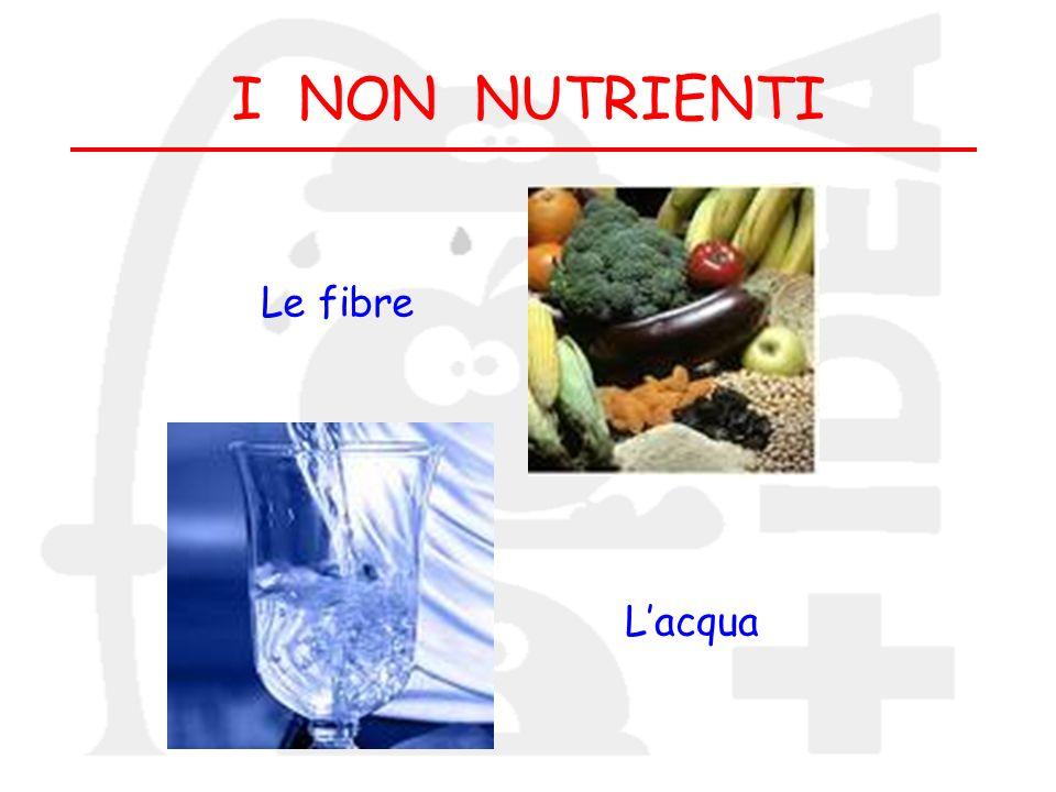 I NON NUTRIENTI Le fibre Lacqua