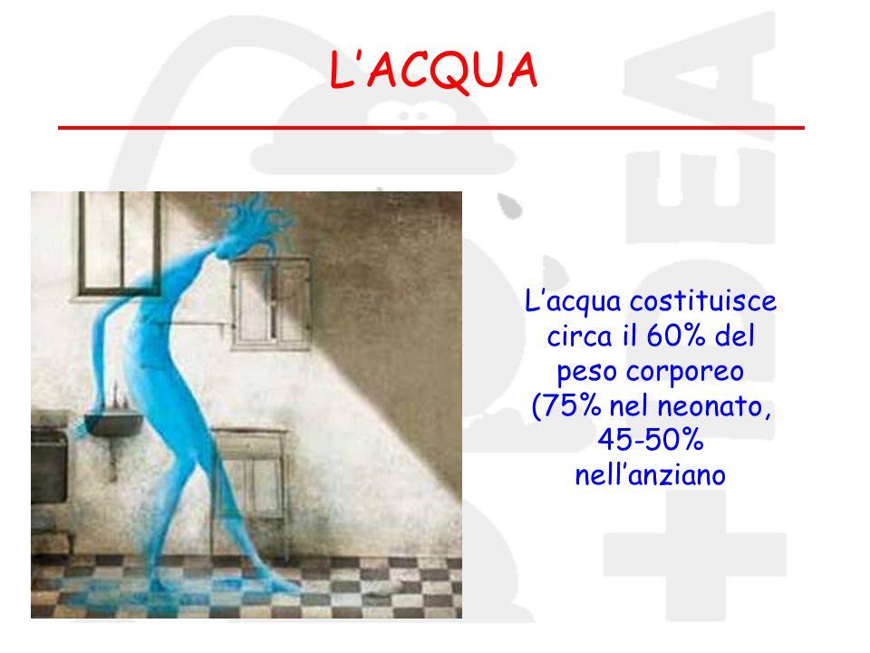 LACQUA Lacqua costituisce circa il 60% del peso corporeo (75% nel neonato, 45-50% nellanziano