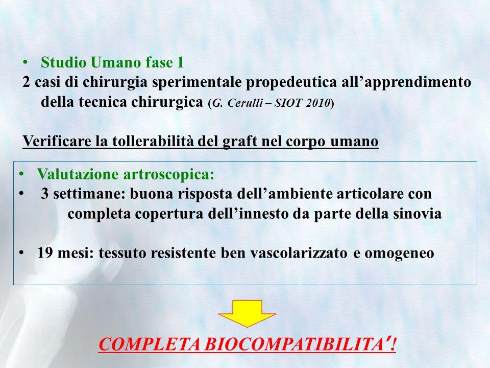 Studio Umano fase 1 2 casi di chirurgia sperimentale propedeutica allapprendimento della tecnica chirurgica (G. Cerulli – SIOT 2010) Verificare la tol