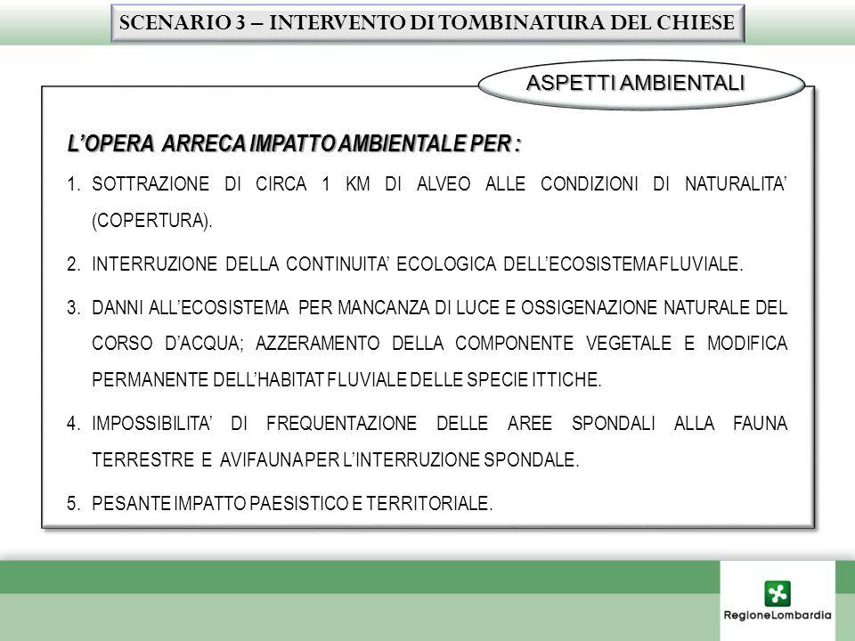 LOPERA ARRECA IMPATTO AMBIENTALE PER : 1.SOTTRAZIONE DI CIRCA 1 KM DI ALVEO ALLE CONDIZIONI DI NATURALITA (COPERTURA). 2.INTERRUZIONE DELLA CONTINUITA