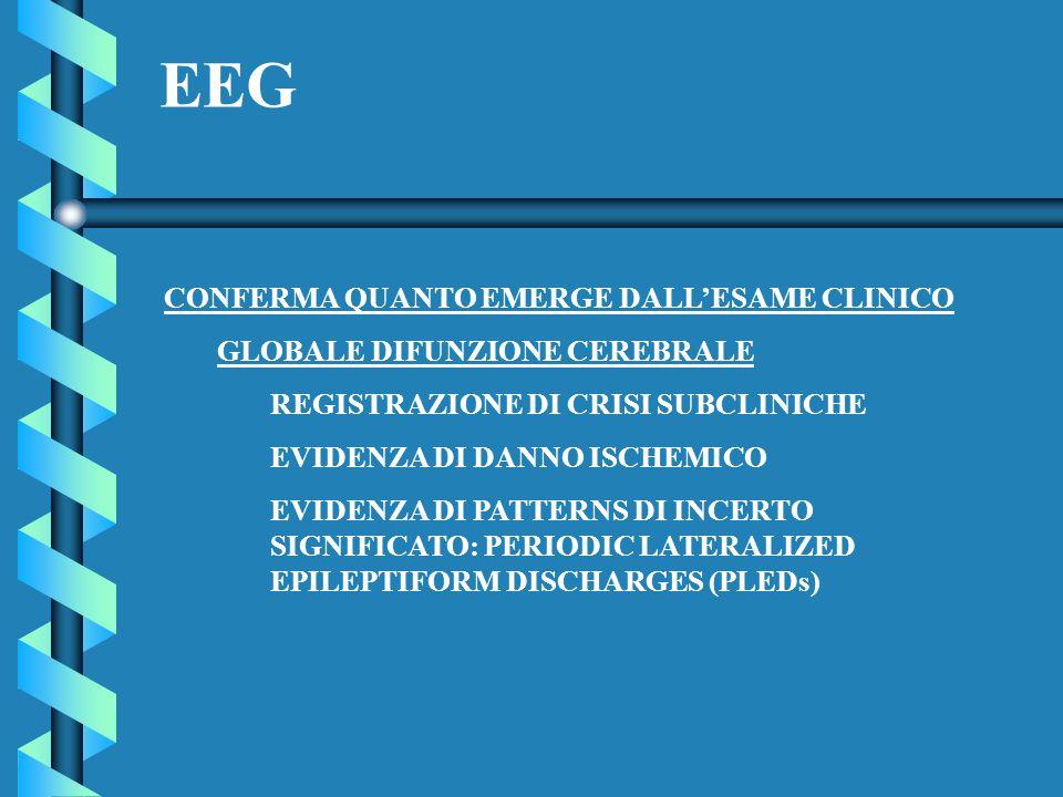 EEG CONFERMA QUANTO EMERGE DALLESAME CLINICO GLOBALE DIFUNZIONE CEREBRALE REGISTRAZIONE DI CRISI SUBCLINICHE EVIDENZA DI DANNO ISCHEMICO EVIDENZA DI P