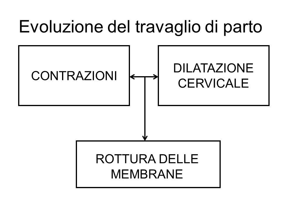 Evoluzione del travaglio di parto CONTRAZIONI DILATAZIONE CERVICALE ROTTURA DELLE MEMBRANE