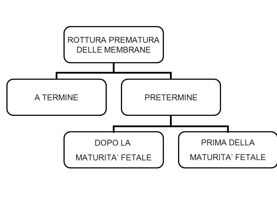 ROTTURA PREMATURA DELLE MEMBRANE A TERMINEPRETERMINE DOPO LA MATURITA FETALE PRIMA DELLA MATURITA FETALE