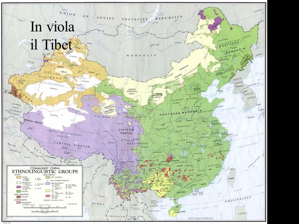 In viola il Tibet