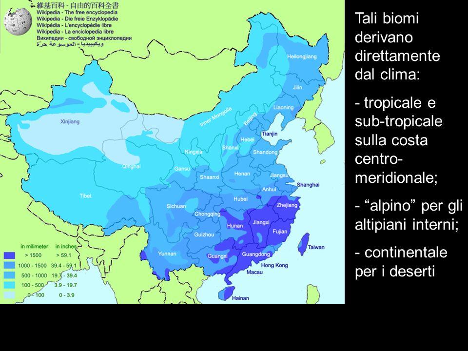 Tali biomi derivano direttamente dal clima: - tropicale e sub-tropicale sulla costa centro- meridionale; - alpino per gli altipiani interni; - contine