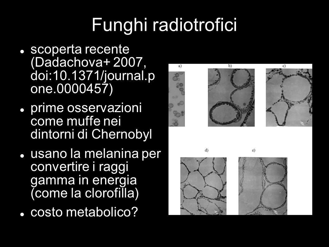 Funghi radiotrofici scoperta recente (Dadachova+ 2007, doi:10.1371/journal.p one.0000457) prime osservazioni come muffe nei dintorni di Chernobyl usan