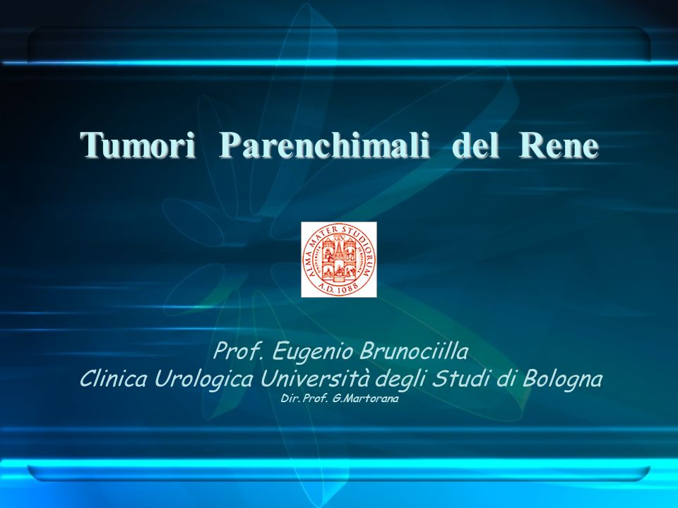 Tumori Parenchimali del Rene Prof. Eugenio Brunociilla Clinica Urologica Università degli Studi di Bologna Dir. Prof. G.Martorana
