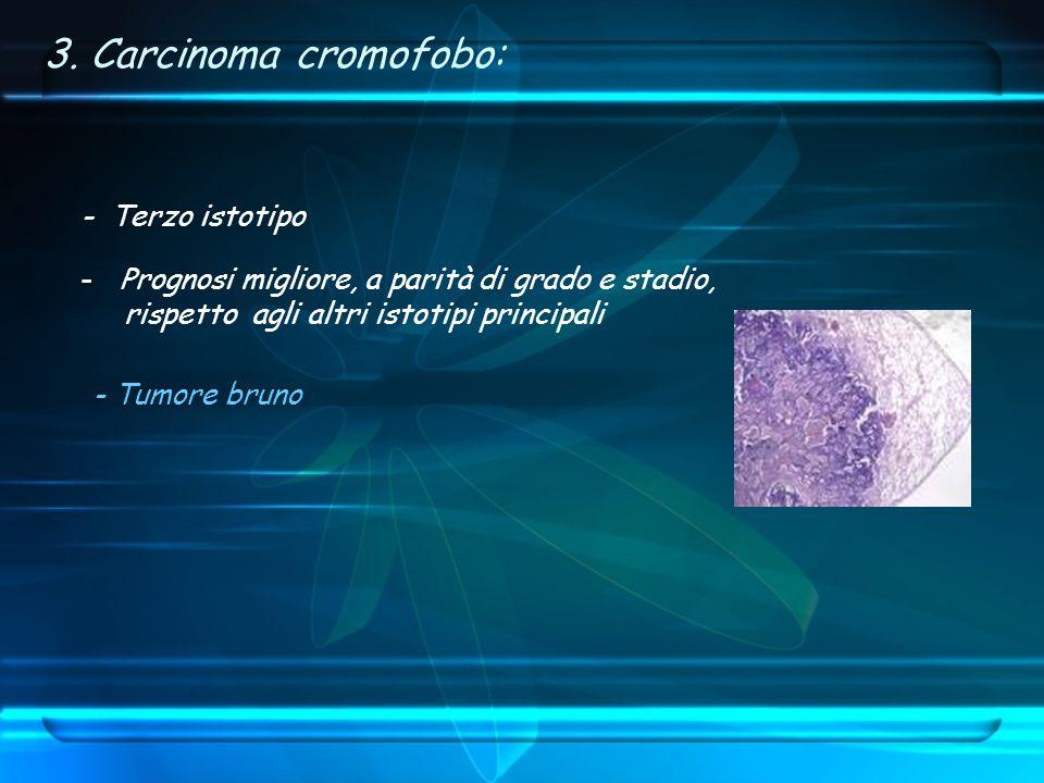 3. Carcinoma cromofobo: - Terzo istotipo -Prognosi migliore, a parità di grado e stadio, rispetto agli altri istotipi principali - Tumore bruno