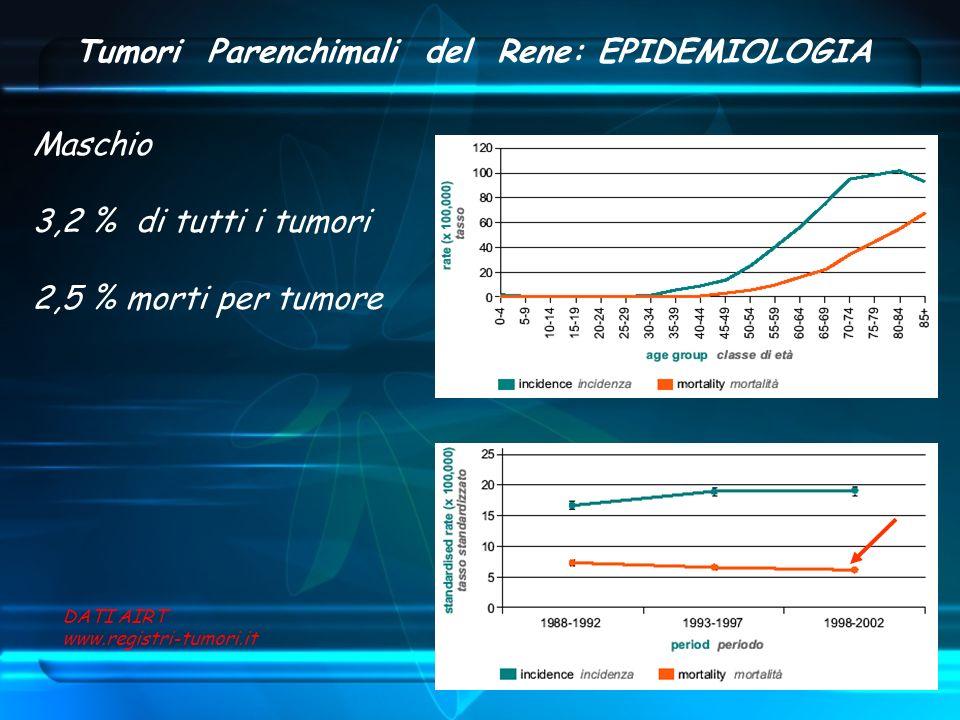 Tumori Parenchimali del Rene: EPIDEMIOLOGIA Maschio 3,2 % di tutti i tumori 2,5 % morti per tumore DATI AIRT www.registri-tumori.it