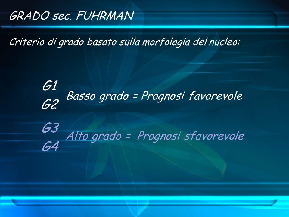 GRADO sec. FUHRMAN Criterio di grado basato sulla morfologia del nucleo: Alto grado = Prognosi sfavorevole Basso grado = Prognosi favorevole G1 G2 G3