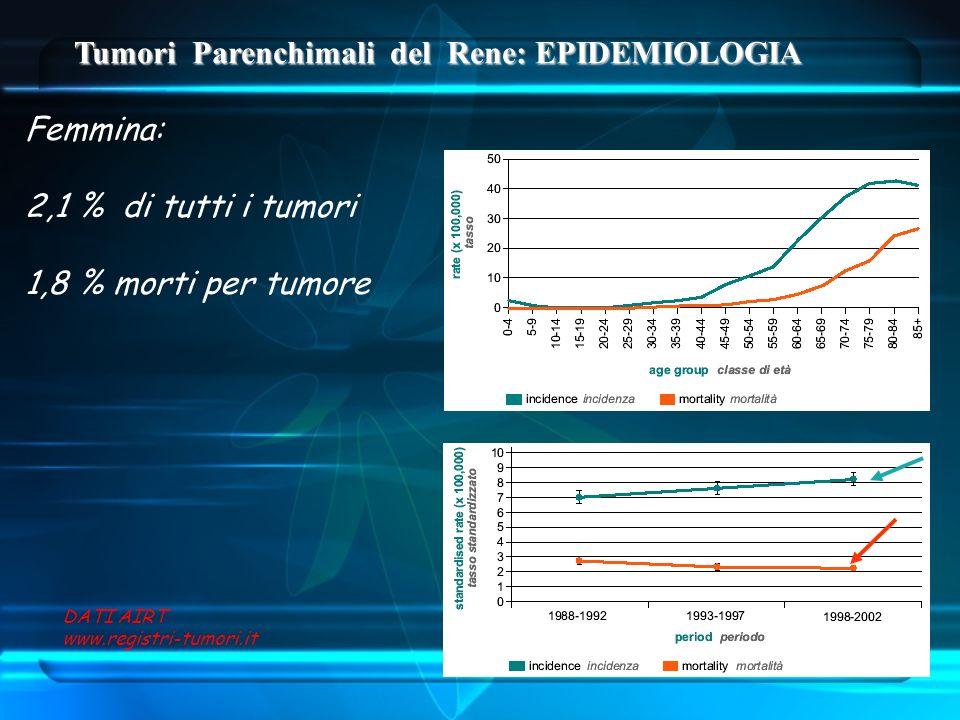 Tumori Parenchimali del Rene: EPIDEMIOLOGIA Femmina: 2,1 % di tutti i tumori 1,8 % morti per tumore DATI AIRT www.registri-tumori.it