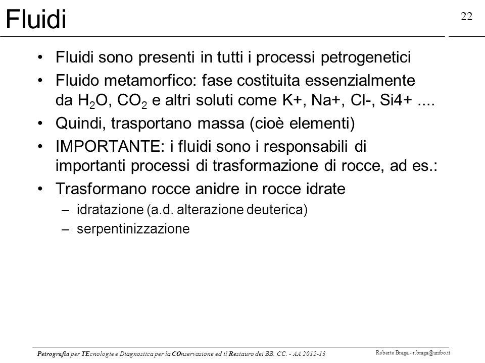 Petrografia per TEcnologie e Diagnostica per la COnservazione ed il Restauro dei BB. CC. - AA 2012-13 Roberto Braga - r.braga@unibo.it 22 Fluidi Fluid