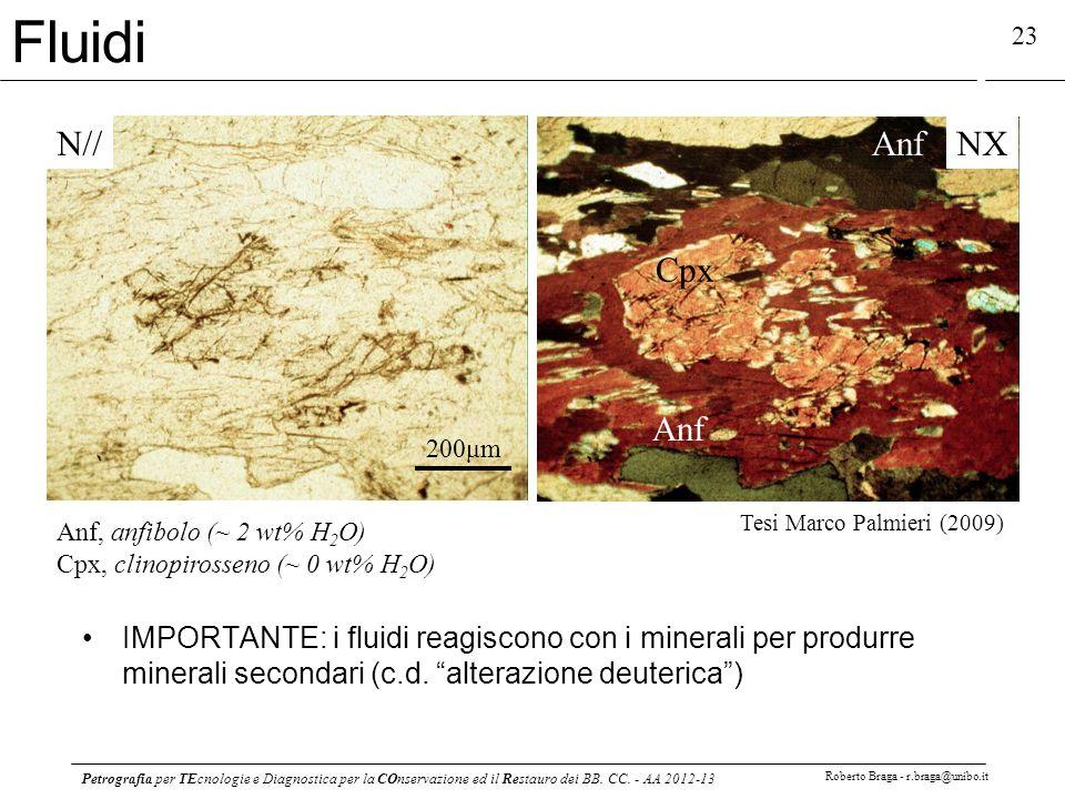 Petrografia per TEcnologie e Diagnostica per la COnservazione ed il Restauro dei BB. CC. - AA 2012-13 Roberto Braga - r.braga@unibo.it 23 Fluidi N//NX
