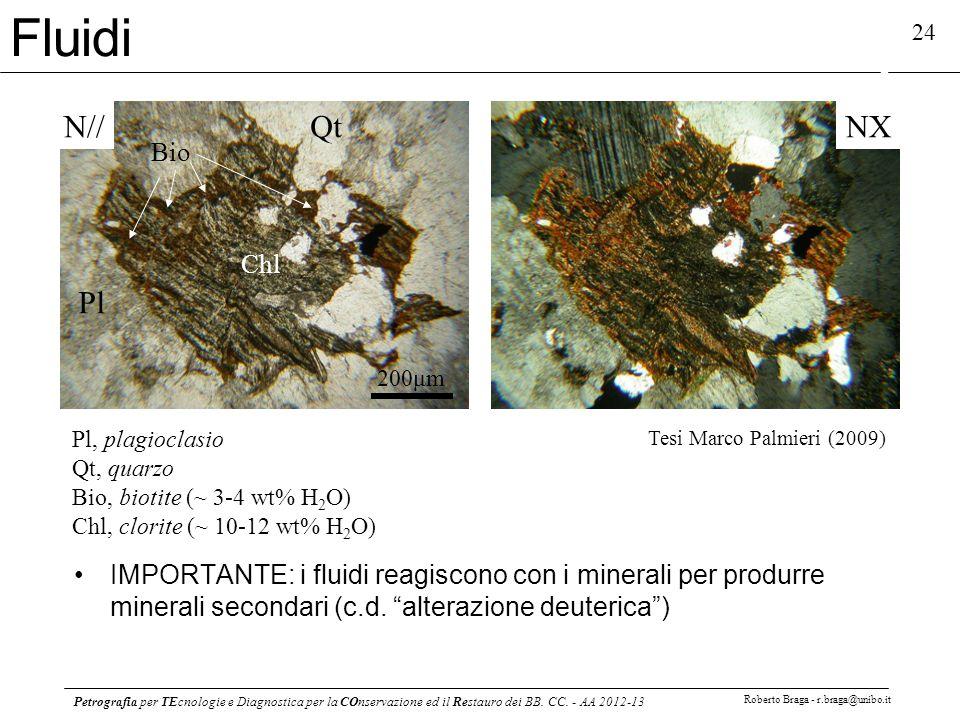 Petrografia per TEcnologie e Diagnostica per la COnservazione ed il Restauro dei BB. CC. - AA 2012-13 Roberto Braga - r.braga@unibo.it 24 N//NX Pl Qt
