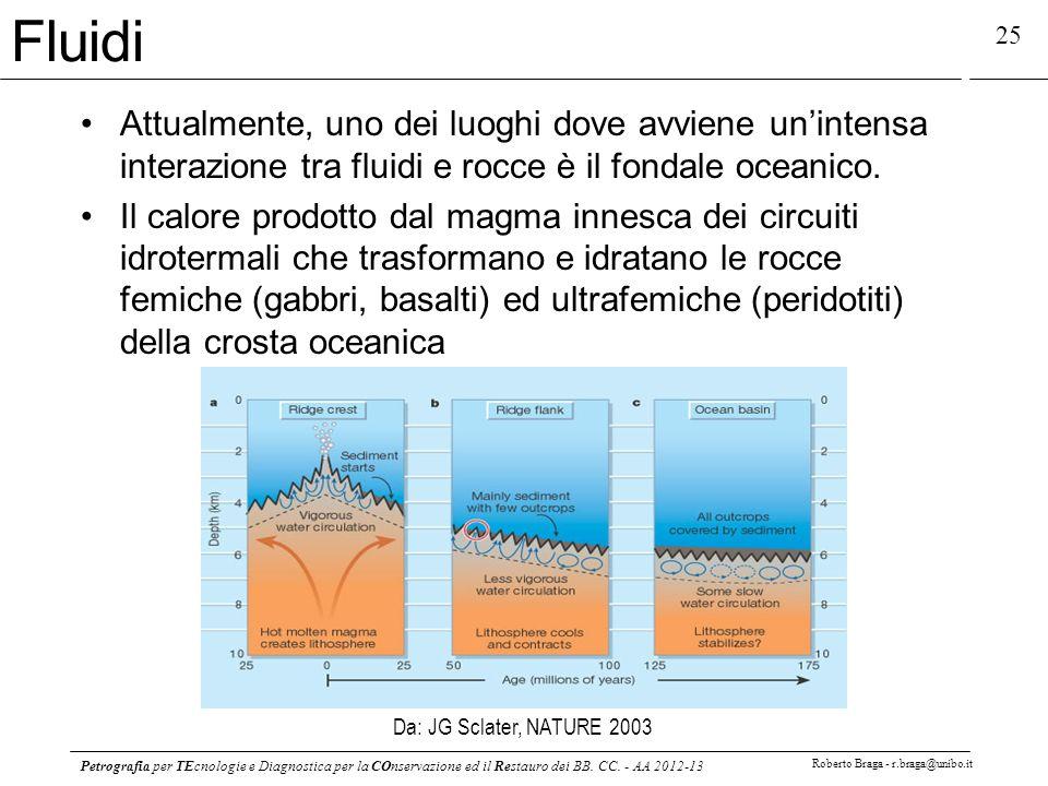 Petrografia per TEcnologie e Diagnostica per la COnservazione ed il Restauro dei BB. CC. - AA 2012-13 Roberto Braga - r.braga@unibo.it 25 Da: JG Sclat