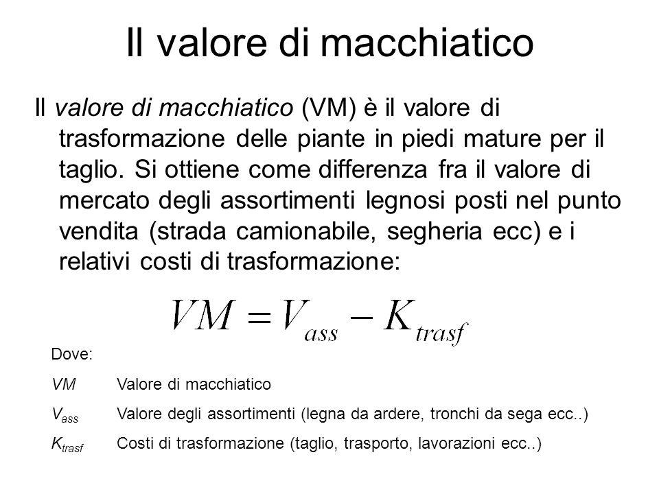 Il valore di macchiatico Il valore di macchiatico (VM) è il valore di trasformazione delle piante in piedi mature per il taglio.
