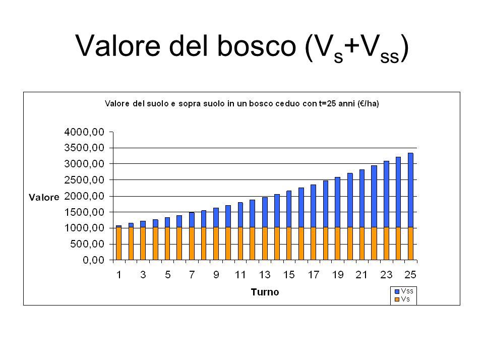 Valore del bosco (V s +V ss )