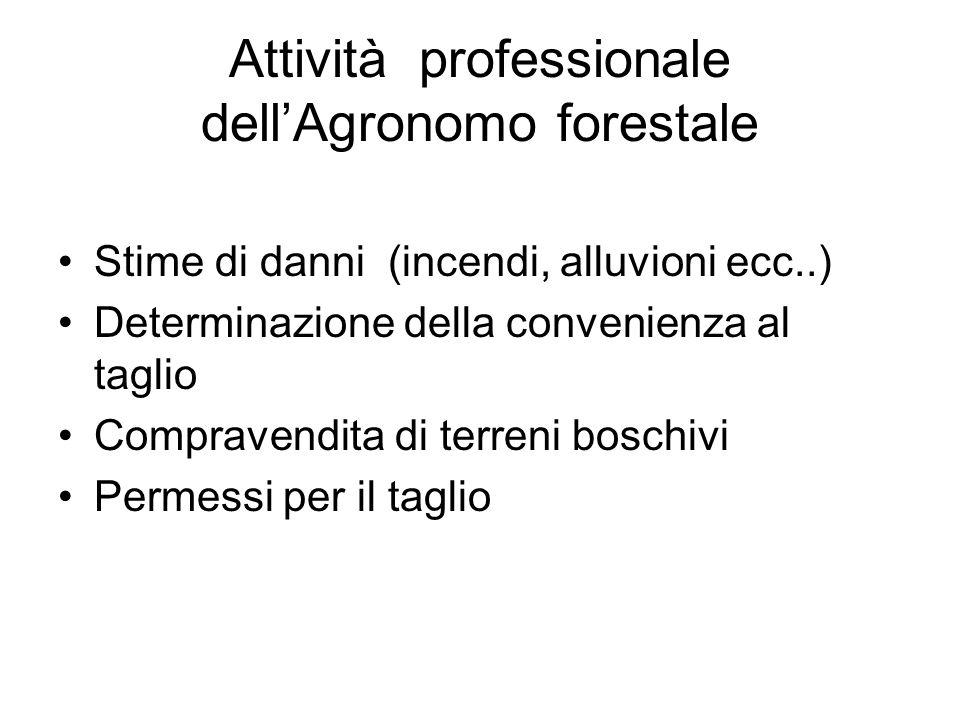 Attività professionale dellAgronomo forestale Stime di danni (incendi, alluvioni ecc..) Determinazione della convenienza al taglio Compravendita di terreni boschivi Permessi per il taglio