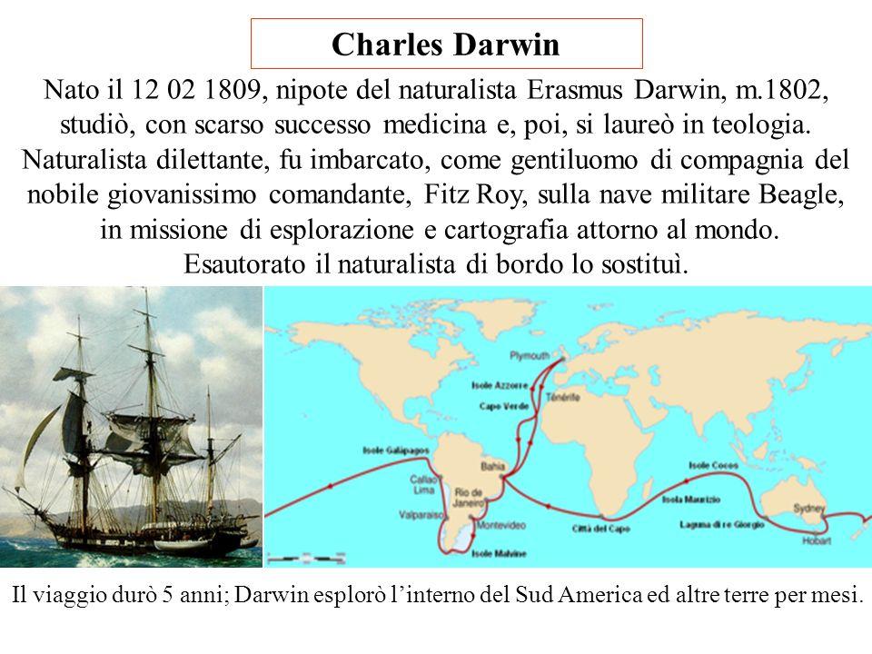 Il ruolo della Genetica e della Epigenetica Marco Benelli Corrado e Giovanna Bartolini LEvoluzione che Darwin non poteva conoscere Le scoperte dellAst