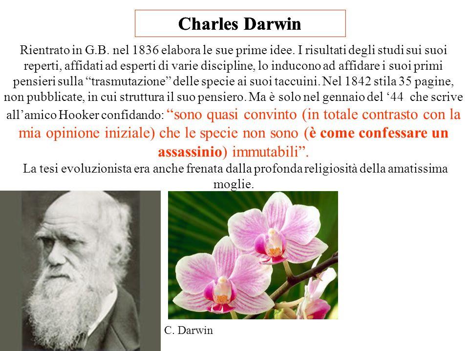 Charles Darwin Rientrato in G.B.nel 1836 elabora le sue prime idee.