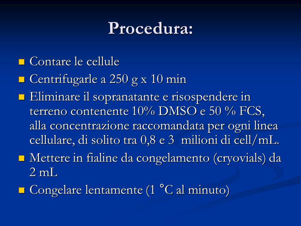 Procedura: Contare le cellule Contare le cellule Centrifugarle a 250 g x 10 min Centrifugarle a 250 g x 10 min Eliminare il sopranatante e risospendere in terreno contenente 10% DMSO e 50 % FCS, alla concentrazione raccomandata per ogni linea cellulare, di solito tra 0,8 e 3 milioni di cell/mL.