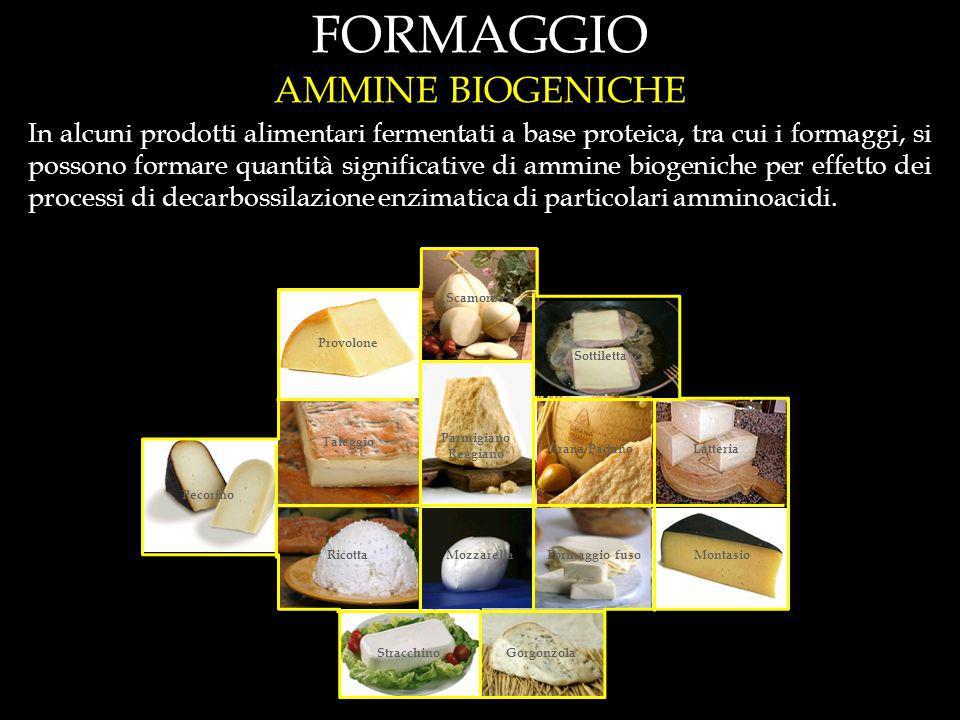 In alcuni prodotti alimentari fermentati a base proteica, tra cui i formaggi, si possono formare quantità significative di ammine biogeniche per effetto dei processi di decarbossilazione enzimatica di particolari amminoacidi.