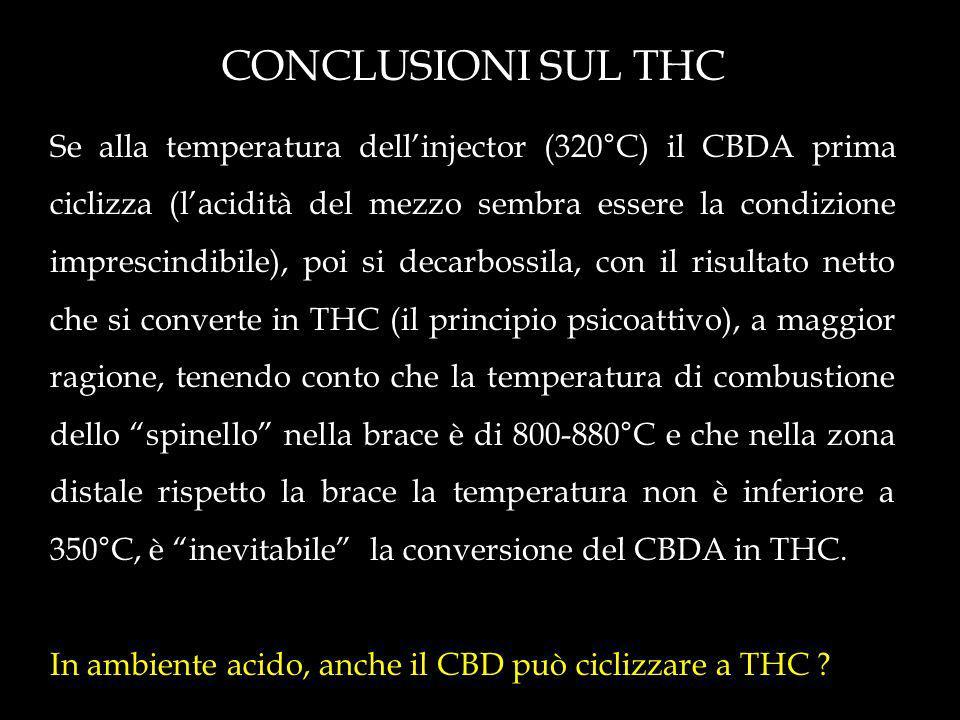 CONCLUSIONI SUL THC Se alla temperatura dellinjector (320°C) il CBDA prima ciclizza (lacidità del mezzo sembra essere la condizione imprescindibile), poi si decarbossila, con il risultato netto che si converte in THC (il principio psicoattivo), a maggior ragione, tenendo conto che la temperatura di combustione dello spinello nella brace è di 800-880°C e che nella zona distale rispetto la brace la temperatura non è inferiore a 350°C, è inevitabile la conversione del CBDA in THC.