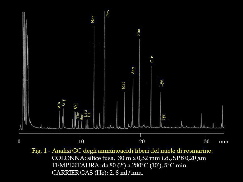 Fig.1 - Analisi GC degli amminoacidi liberi del miele di rosmarino.