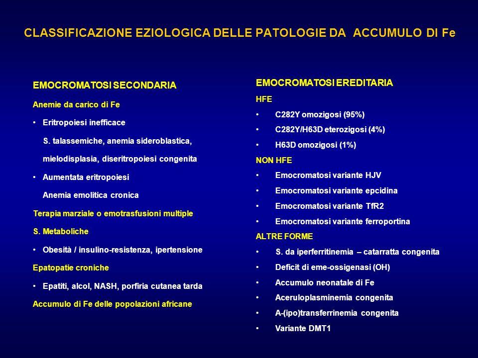 CLASSIFICAZIONE EZIOLOGICA DELLE PATOLOGIE DA ACCUMULO DI Fe EMOCROMATOSI EREDITARIA HFE C282Y omozigosi (95%) C282Y/H63D eterozigosi (4%) H63D omozig