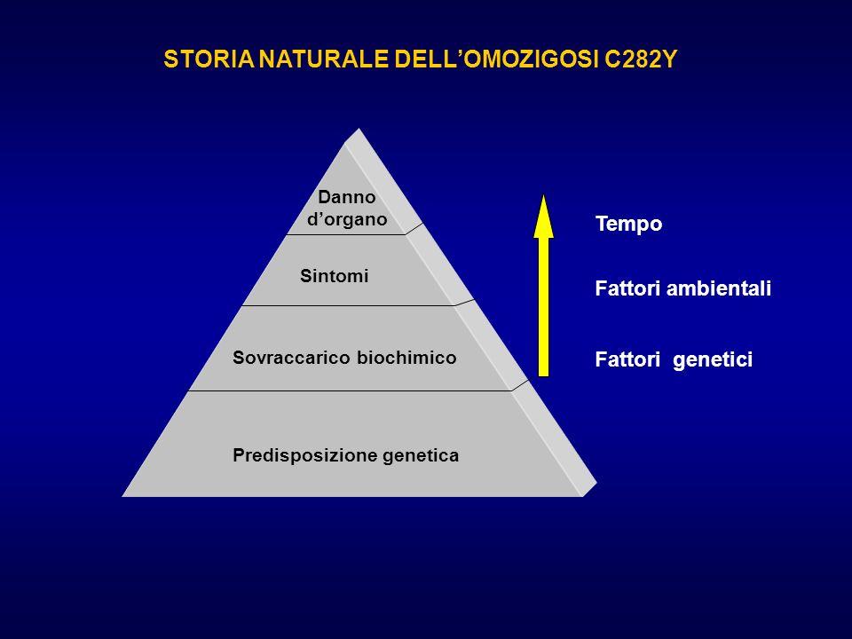 STORIA NATURALE DELLOMOZIGOSI C282Y Predisposizione genetica Sovraccarico biochimico Sintomi Danno dorgano Fattori genetici Fattori ambientali Tempo