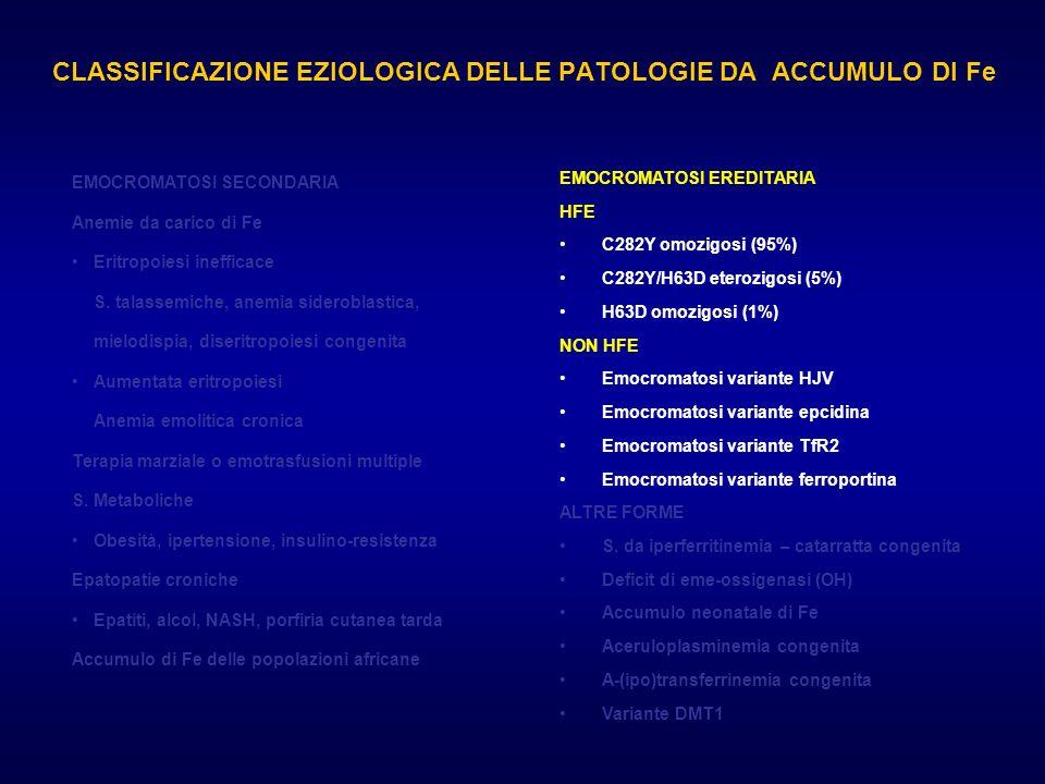 CLASSIFICAZIONE EZIOLOGICA DELLE PATOLOGIE DA ACCUMULO DI Fe EMOCROMATOSI EREDITARIA HFE C282Y omozigosi (95%) C282Y/H63D eterozigosi (5%) H63D omozig