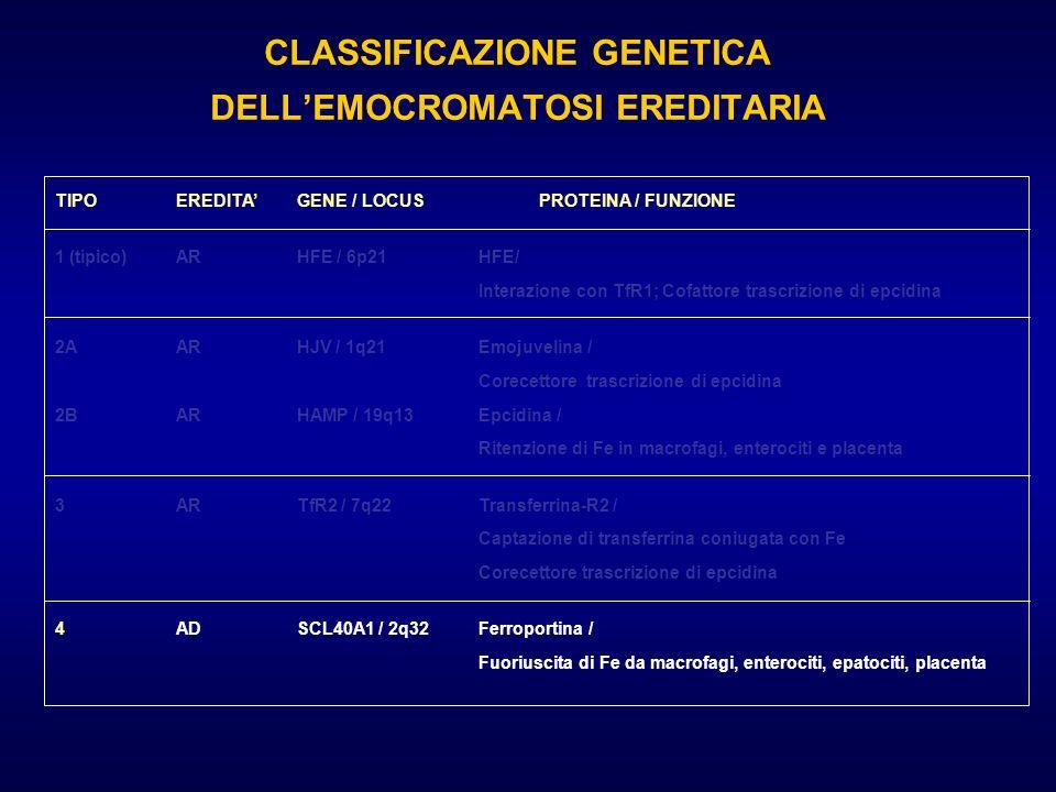 CLASSIFICAZIONE GENETICA DELLEMOCROMATOSI EREDITARIA TIPOEREDITAGENE / LOCUSPROTEINA / FUNZIONE 1 (tipico)ARHFE / 6p21HFE/ Interazione con TfR1; Cofat