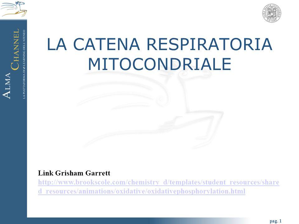 pag. 1 LA CATENA RESPIRATORIA MITOCONDRIALE Link Grisham Garrett http://www.brookscole.com/chemistry_d/templates/student_resources/share d_resources/a