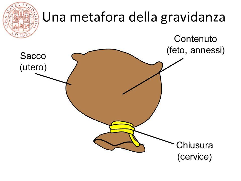 Una metafora della gravidanza Sacco (utero) Contenuto (feto, annessi) Chiusura (cervice)