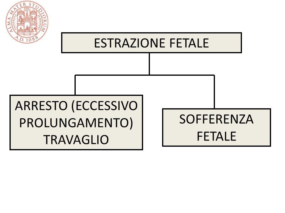 Interventi chirurgici in travaglio di parto Episiotomia Interventi per l estrazione fetale – Taglio cesareo – Kristeller – Ventosa – Forcipe