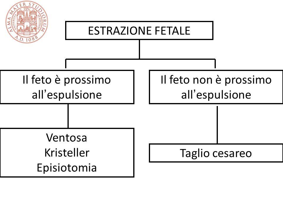 ESTRAZIONE FETALE Il feto è prossimo all espulsione Il feto non è prossimo all espulsione Ventosa Kristeller Episiotomia Taglio cesareo