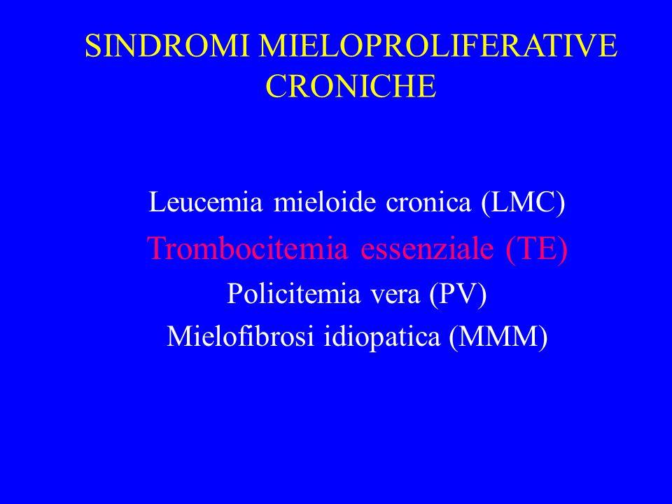SINDROMI MIELOPROLIFERATIVE CRONICHE Leucemia mieloide cronica (LMC) Trombocitemia essenziale (TE) Policitemia vera (PV) Mielofibrosi idiopatica (MMM)