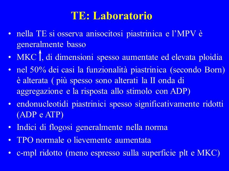 TE: Laboratorio nella TE si osserva anisocitosi piastrinica e lMPV è generalmente basso MKC, di dimensioni spesso aumentate ed elevata ploidia nel 50%