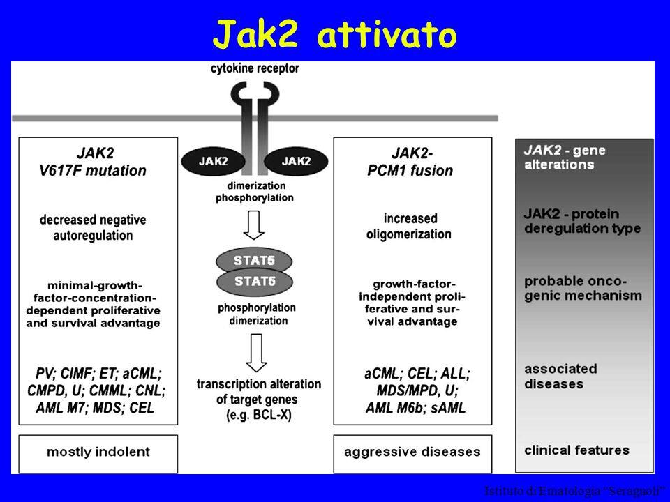 Jak2 attivato Istituto di Ematologia Seragnoli