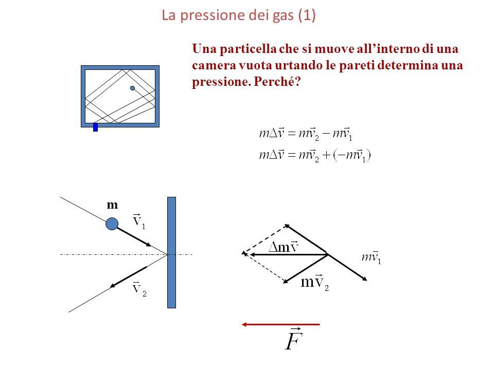 La pressione dei gas (1) m Una particella che si muove allinterno di una camera vuota urtando le pareti determina una pressione. Perché?