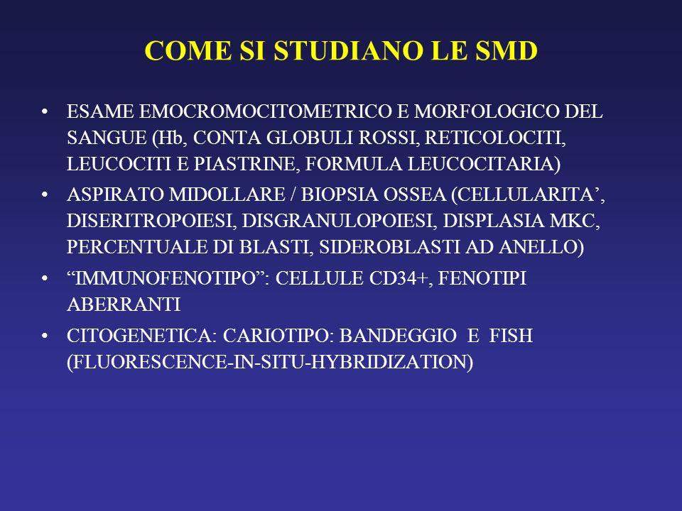 COME SI STUDIANO LE SMD ESAME EMOCROMOCITOMETRICO E MORFOLOGICO DEL SANGUE (Hb, CONTA GLOBULI ROSSI, RETICOLOCITI, LEUCOCITI E PIASTRINE, FORMULA LEUC