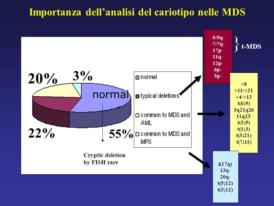 Importanza dellanalisi del cariotipo nelle MDS -5/5q- -7/7q- 17p- 11q- 12p- 6p- 3p- +8 +11/+21 +4/+13 t(6;9) 3q21q26 11q23 t(3;5) t(1;3) t(3;21) t(7;1