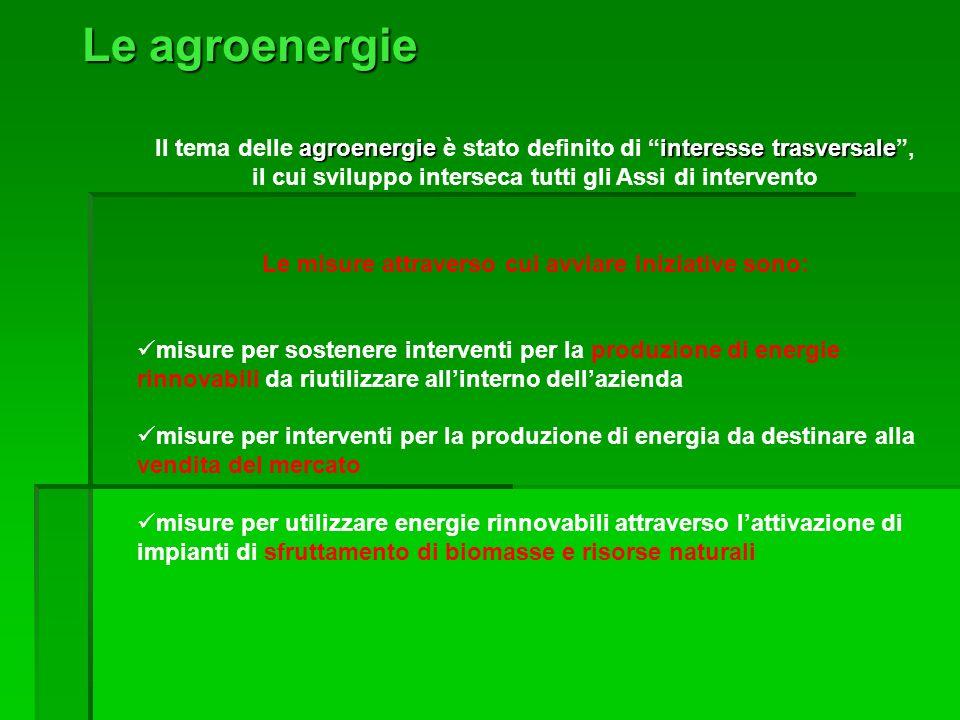 Le agroenergie agroenergieinteresse trasversale Il tema delle agroenergie è stato definito di interesse trasversale, il cui sviluppo interseca tutti g