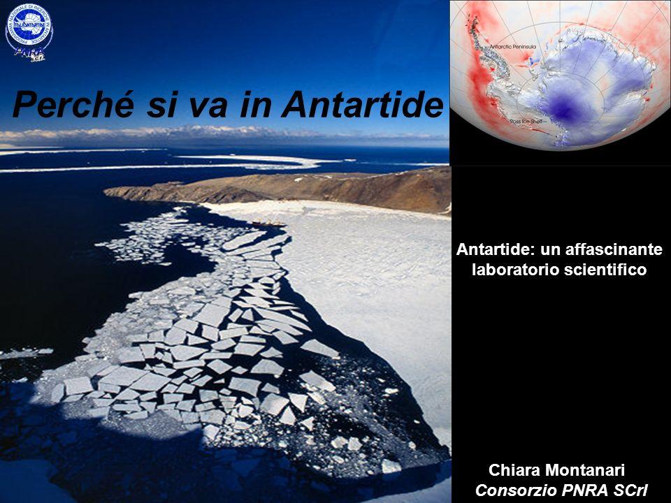 Un pò di numeri sullAntartide Superficie 14.000.000 kmq (circa 1,5 volte lEuropa, oltre 45 volte lItalia) Temperature Media invernale: sulla costa -15 °C e nellinterno -50 °C Media estiva: sulla costa 0 °C e nellinterno -35 °C Velocità del vento 320 km/h max registrata a Dumont DUrville Presenze durante lEstate Australe: ca 4500 durante lInverno Australe: ca 400